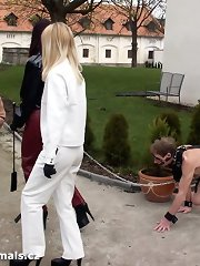 Male pony slaves outdoor