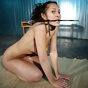 Superb pussycat, Isabell had involving learn someone's skin submissive lessons.