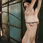 Wet Lola was chained coupled with brutal whipped.