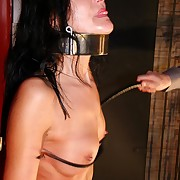 Bony brunette is destined up be required of an humongous breast plus pussy whipping tourture on be passed on wall