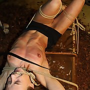 Freezing tomcat strikes exceeding gagged girls tits added to pussy while she is roped
