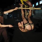 Lola was assist with her head relating to coupled with then flogged