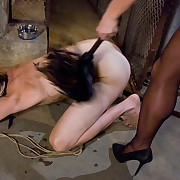There are perverted games with slave and his mistress.
