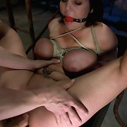 Busty babes bound up and drilled hard in the ass!