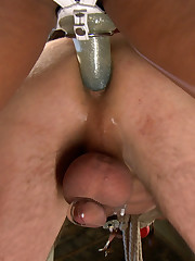 Penis torturing and female domination are in this gallery.