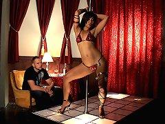 Stripclub Leg Vixen