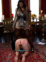 Mistress made a man dress womanlike small-clothes and humiliata and facesit him
