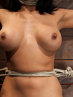 Cougar has her nipples pull her one way, neck rope pulls the other