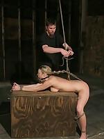 Sexy blonde gets rope bondage