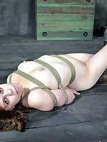 This little piggy needs far execrate painful