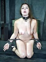 Servant Wet-nurse Dee was tormented intense close by metallic veil