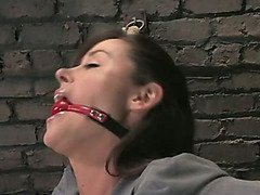 Bound businesswoman bottom endures the violent wand