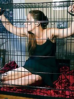 Sammie b bound within the cage
