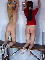 Collared slavegirls submit to harsh bondage
