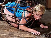TopGrl BDSM  FemDom Bondage, Girl/Girl, Fetish, Orgasms, Hardcore Sex  High Definition Downloadable Videos