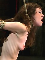 Girl next door suffers the hardest hour on the internet. The Hogtied live show! One hour, no breaks, 4 different positions, all on screen tying!