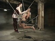 Electro catheter by cruel Mistress Claire Adams
