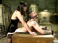 Bobbi was brutally strapon fucked in ass