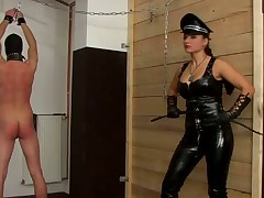 These femdom madams adore having an action