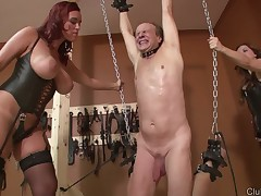 A handful of hot babes punished their bottom