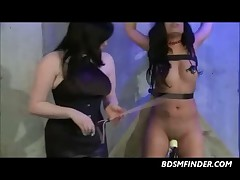 Bound Whipped And Toyed Lesbian Babes