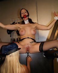 Officer Maxine X ties Janessa to a rack then blindfolds her and teases her body with a bladed glove