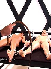 Two chicks were tied and bullwhipped