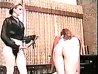 British cutie was flogged on the chear